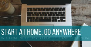 Online Campaign SP16 - Start at home, go anywhere with LCC